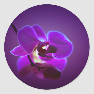 Purple Orchid Round Sticker