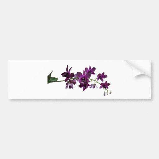 purple orchid spray bumper sticker