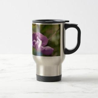 Purple Orchid Tree Flower Coffee Mugs
