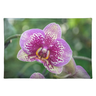 Purple orchid up close placemat