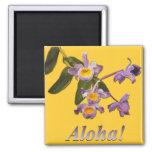 Purple Orchids - Aloha  Magnet