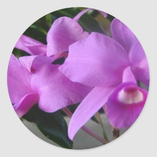 Purple Orchids Classic Round Sticker
