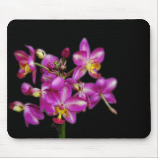 Purple orchids on Black background Mouse Mat