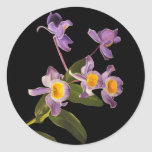 Purple Orchids Stickers