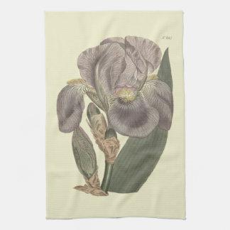 Purple Pale Flag Iris Illustration Tea Towel