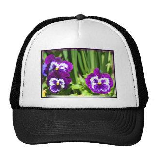 Purple Pansies cap