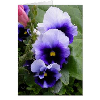 Purple Pansies Card