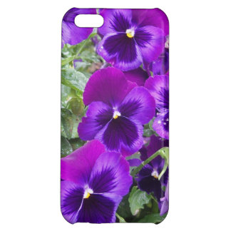 Purple Pansies Cover For iPhone 5C