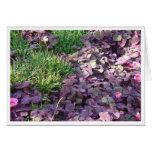 Purple Pansies Greeting Cards