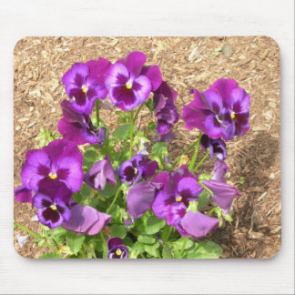 Purple Pansies Mousepad