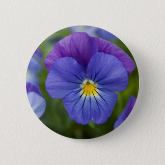 Purple Pansy 6 Cm Round Badge