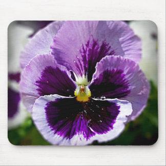 Purple Pansy Close Up Mouse Mat