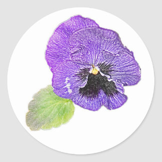 Purple pansy pencil drawing sticker