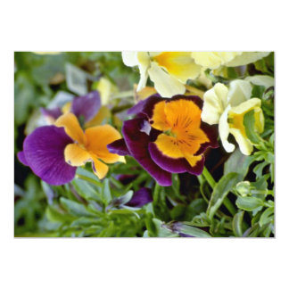 Purple Pansy With Orange Center flowers 13 Cm X 18 Cm Invitation Card