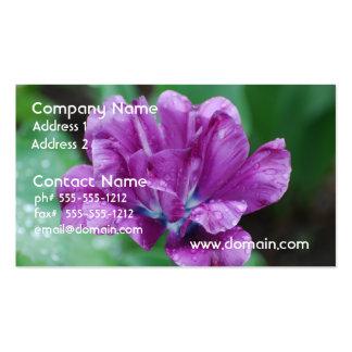 Purple Parrot Tulip Business Card