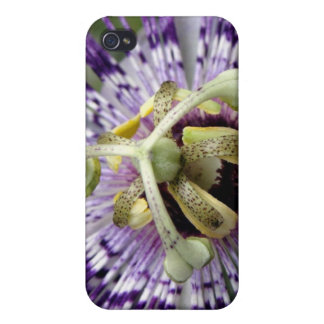 Purple Passion Flower Close Up Cover For iPhone 4