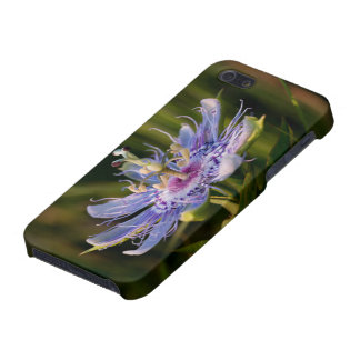 Purple Passion Flower iPhone 5 Cover