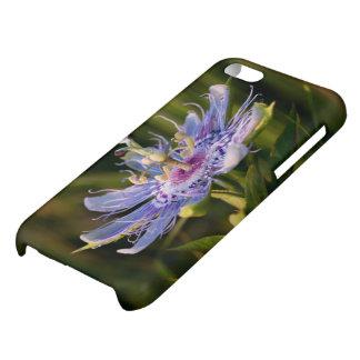 Purple Passion Flower iPhone 5C Case