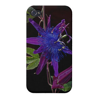 Purple Passion Flower iPhone Case iPhone 4/4S Cover