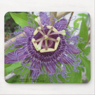 Purple Passion Flower Mouse Pad