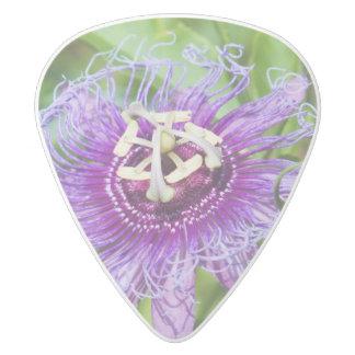 Purple Passion flower pick White Delrin Guitar Pick