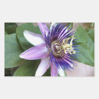 Purple Passion Flower Rectangular Sticker