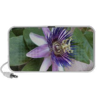 Purple Passion Flower Mp3 Speaker