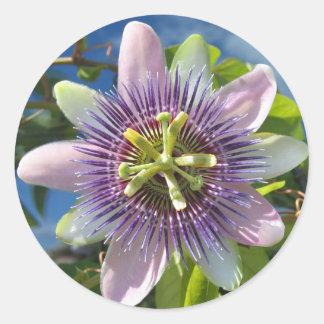 Purple Passion Flower Sticker