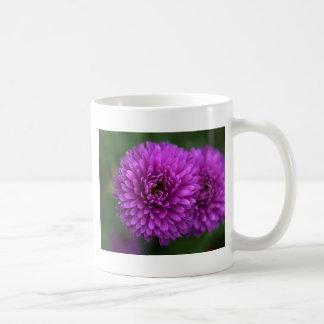 Purple Passion Mugs