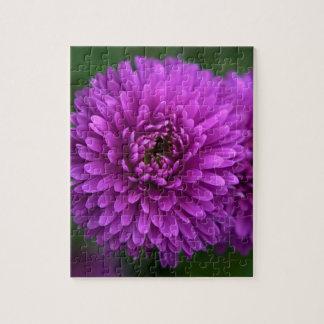 Purple Passion Puzzle