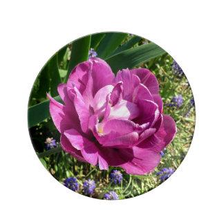 Purple Peopny Tulip Porcelain Plate
