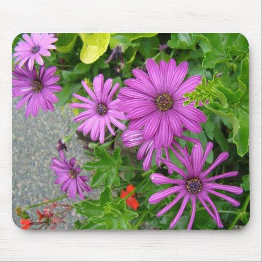 Purple petals amongst the greenery mouse pad