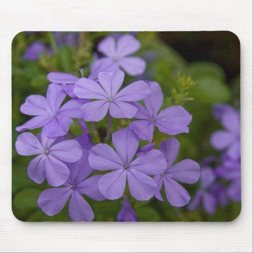 Purple Petals Mouse Pads
