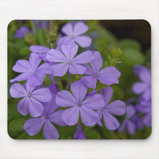 Purple Petals Mouse Pad