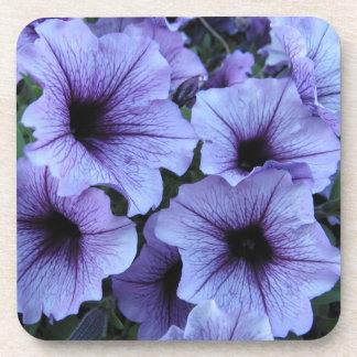 Purple petunia coasters