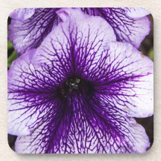 Purple Petunia Coasters Drink Coaster