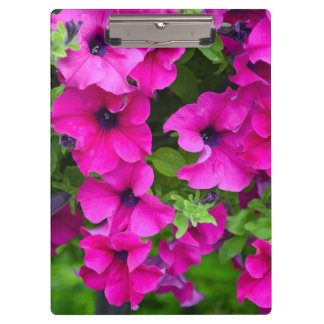 Purple petunias clipboard