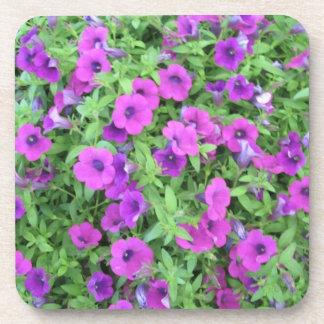 Purple Petunias Coasters - Set of 6