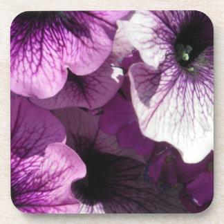 Purple Petunias Paradise Coaster