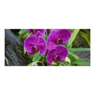 Purple Phalaenopsis Orchid 10 Cm X 24 Cm Invitation Card