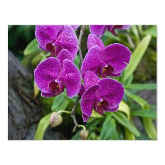 Purple Phalaenopsis Orchid 4.25x5.5 Paper Invitation Card