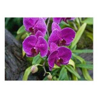 Purple Phalaenopsis Orchid Custom Invite