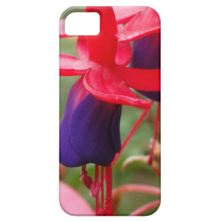 Purple Pink Flowers iPhone SE + iPhone 5/5S iPhone 5 Cases