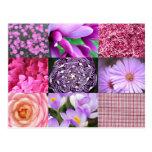 Purple / Pink Photo Collage