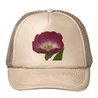 Purple Plum Tulip Trucker Hat