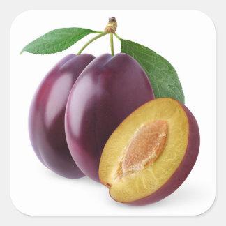 Purple plums square sticker