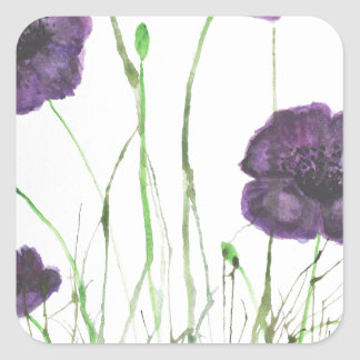 Purple Poppies in the grass Square Sticker