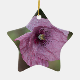 Purple Poppy Christmas Ornament