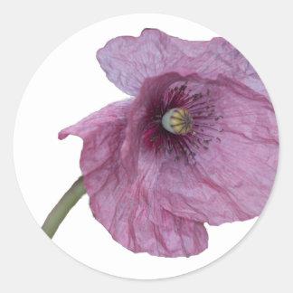 Purple Poppy Round Sticker