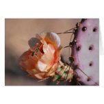 Purple prickly pear blossoms note card